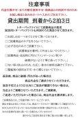 画像2: 【試着】人毛mix☆リアルスキン☆総レースストレートロング【全2色】 (2)